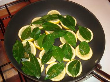 Limoni e alloro